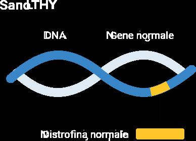 gene healthy